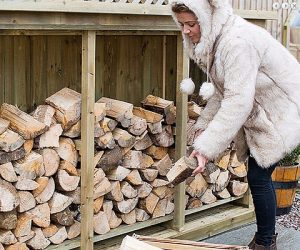 Kiln dried logs in a winter log store